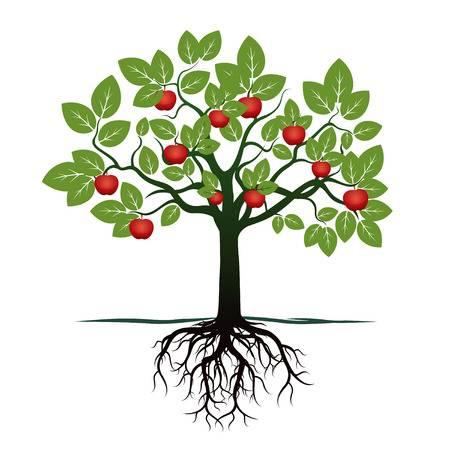 Árbol Financiero